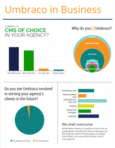 Umbraco in Business Preliminary Results